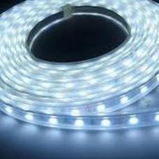 DAYLIGHT STRIPLIGHT 2M 220V LED